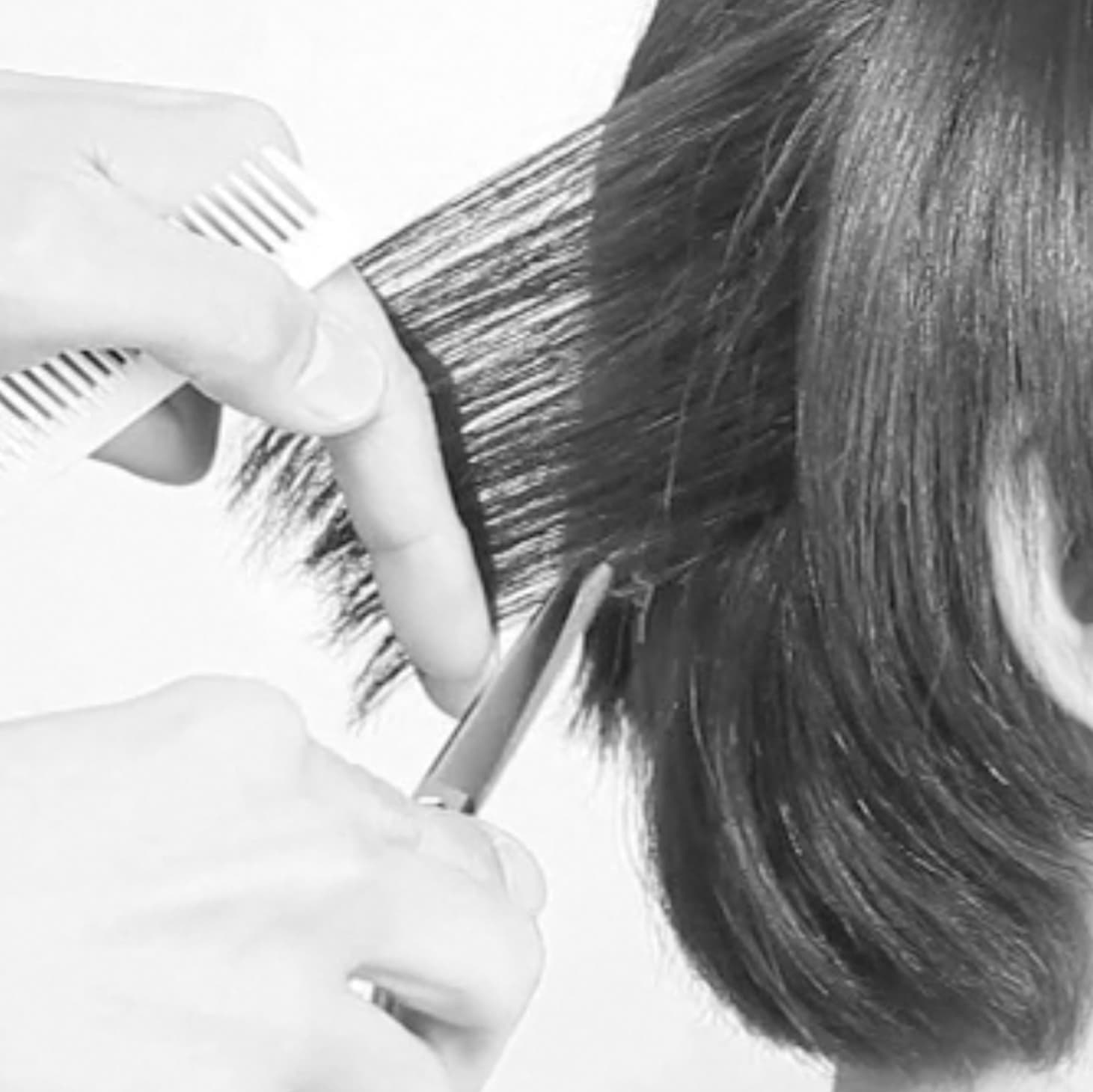 SALON BASIC CUT